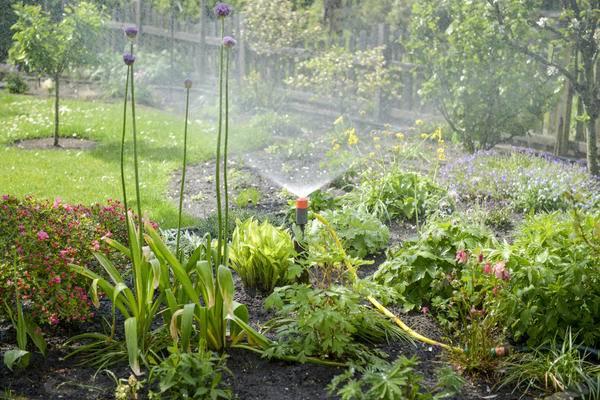 Поливалка для огорода своими руками