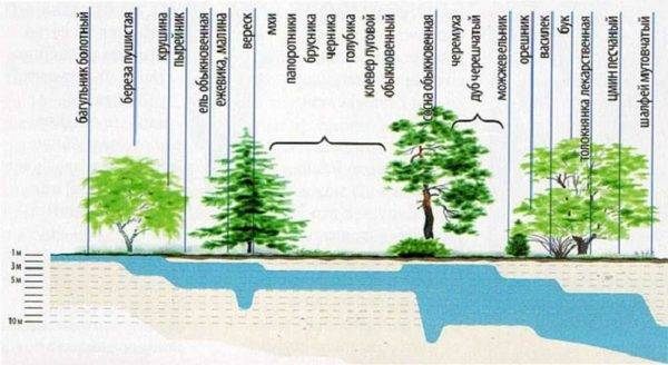 Карты залегания водоносных горизонтов