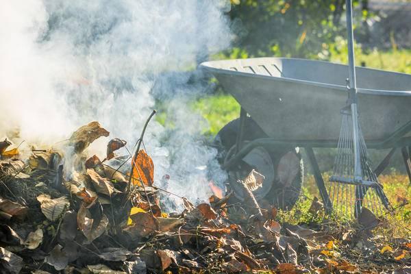 В любой сезон на даче образуется много мусора