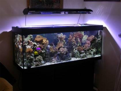 Подводная подсветка для аквариума