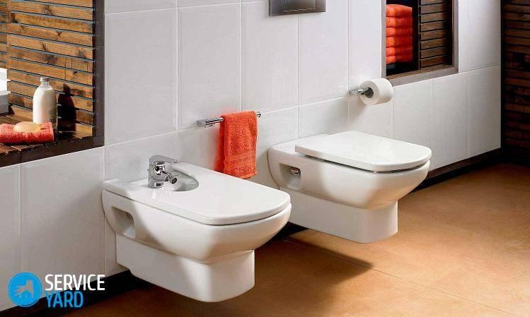 Почему в туалете воняет канализацией