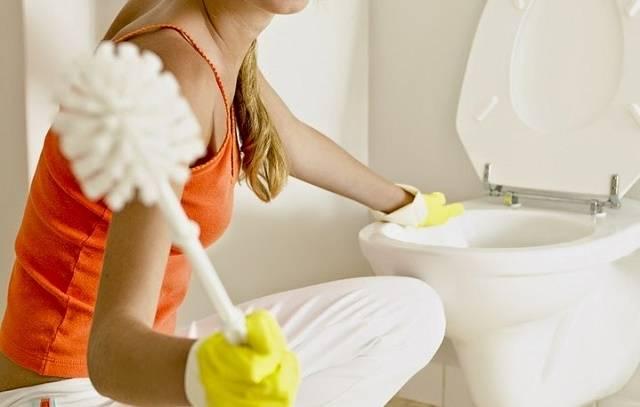 Как прочистить засор в туалете
