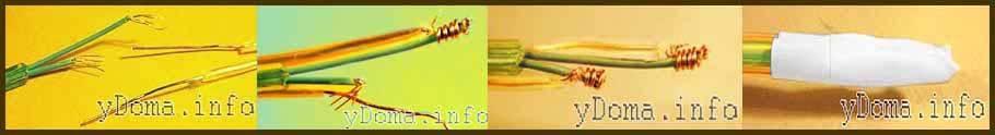 Соединение многожильного и одножильного провода
