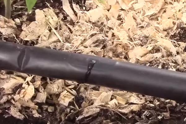 Капельный полив из пнд трубы своими руками